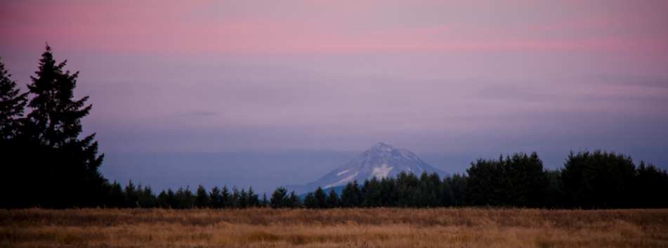 Wonser Woods Mount Hood Sunset